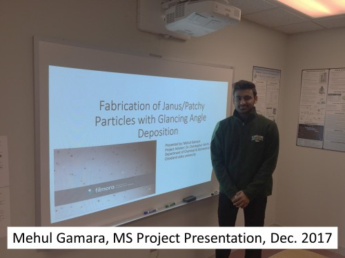 Gamara_MSProject